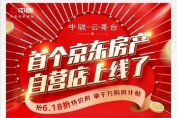1小时400万人观看京东零售集团CEO徐雷直播卖房26亿